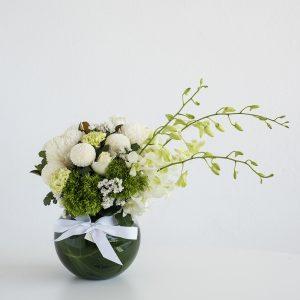 Whites Fishbowl