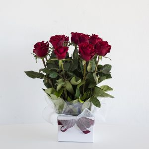 12 Red Roses arranged in to a box with beautiful greenery, romantic