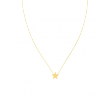 Stunning necklace designed to sit on the collarbone - gold brushed star by Tiger Tree